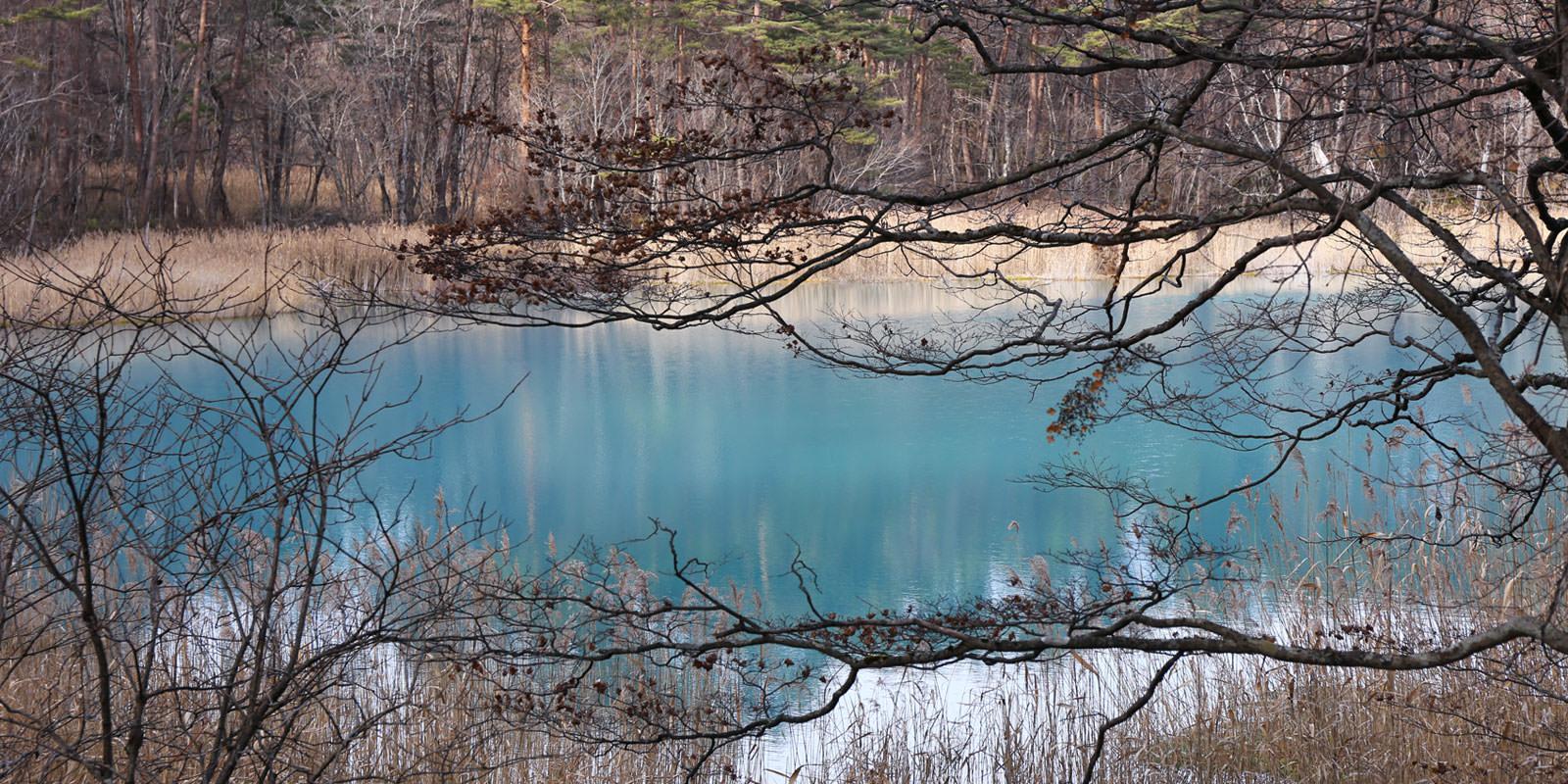 一個人旅行❆冬の東北&南北海道賞雪泡湯Day2:在山林裡遇見夢幻Tiffany藍~絕美五色沼