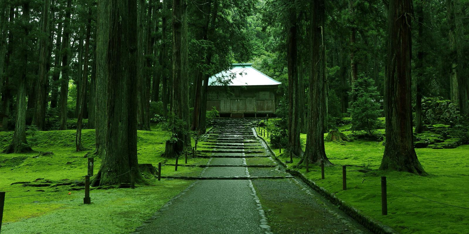 一個人14天大縱走*探訪千年古寺:福井永平寺、白山平泉寺