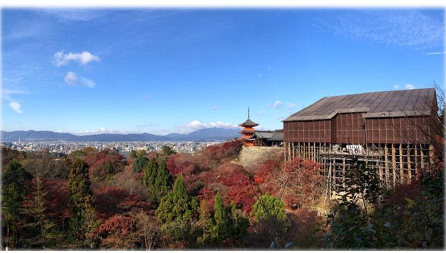 帶媽媽遊京都🍁速記心得🍁