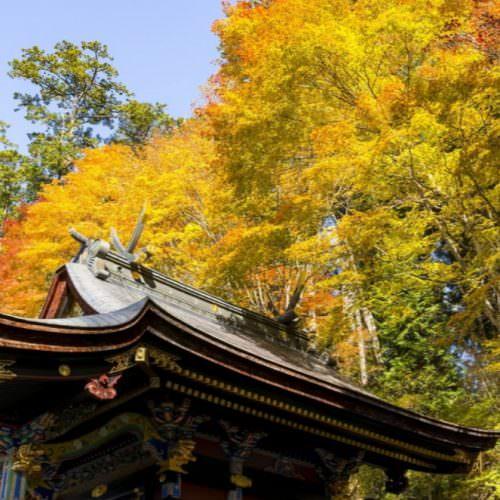 圖片來源:ZEKKI絕景日本